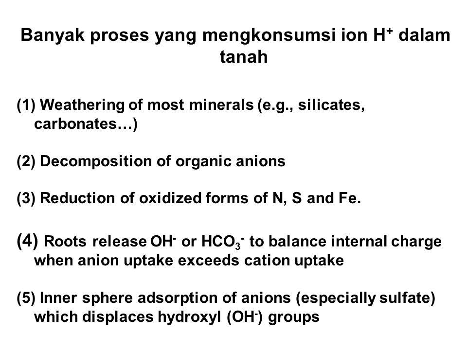 Banyak proses yang mengkonsumsi ion H+ dalam tanah