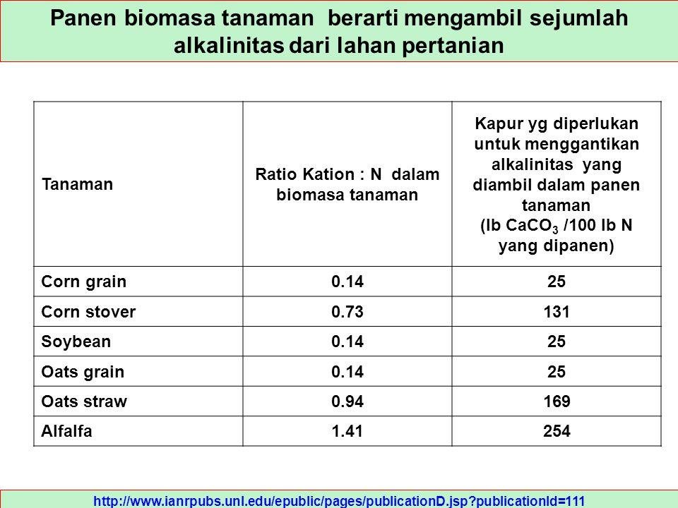 Ratio Kation : N dalam biomasa tanaman