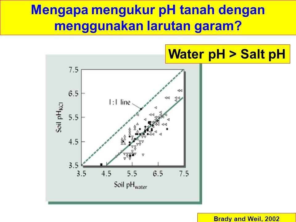 Mengapa mengukur pH tanah dengan menggunakan larutan garam