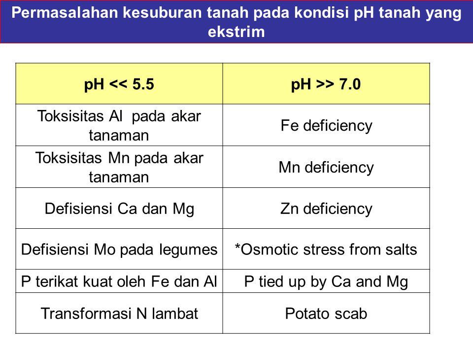 Permasalahan kesuburan tanah pada kondisi pH tanah yang ekstrim