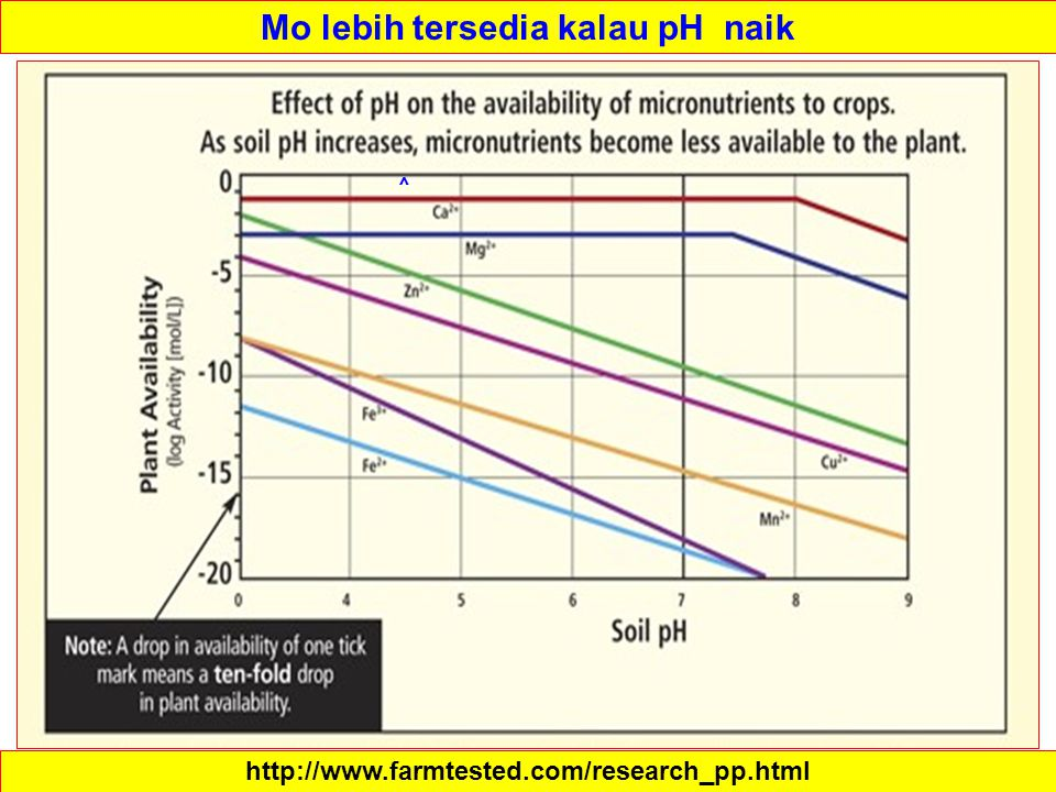 Mo lebih tersedia kalau pH naik