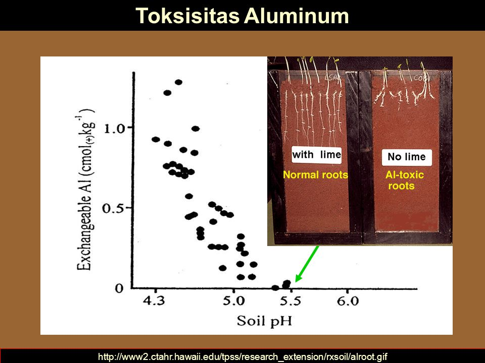 Aluminum toxicity is minimal above