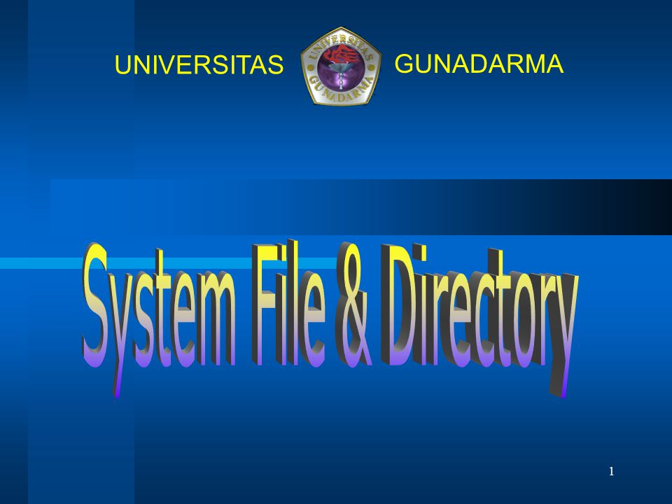 System File & Directory