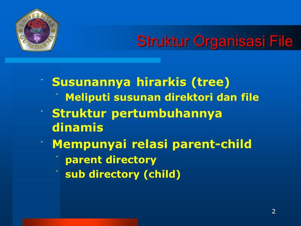 Struktur Organisasi File