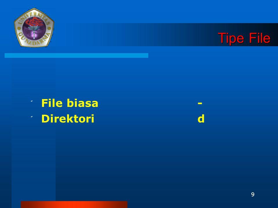 Tipe File File biasa - Direktori d