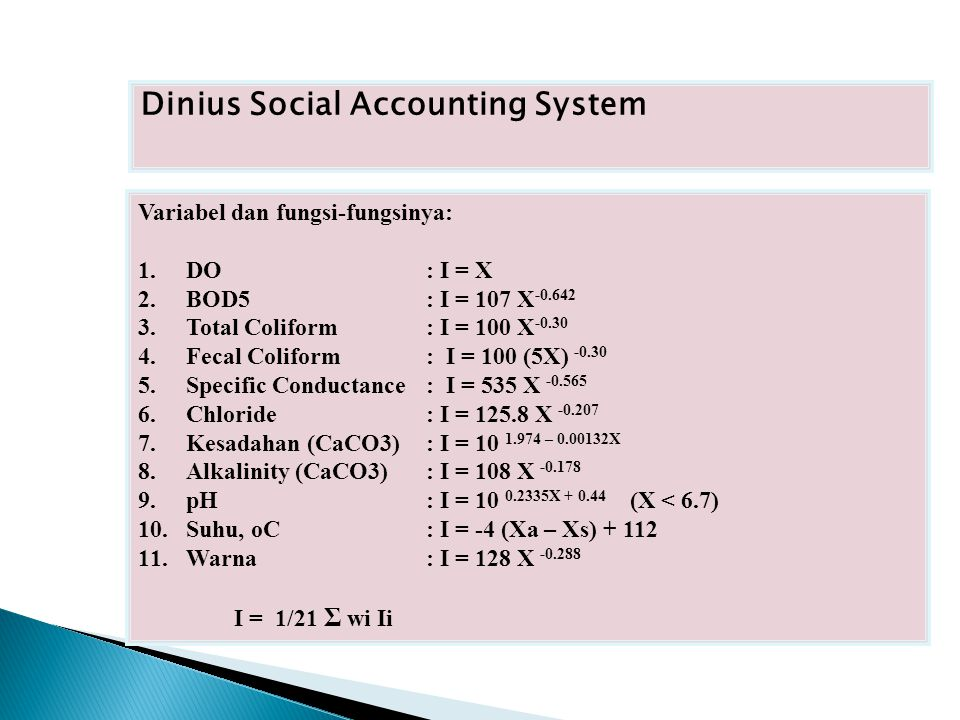 Dinius Social Accounting System