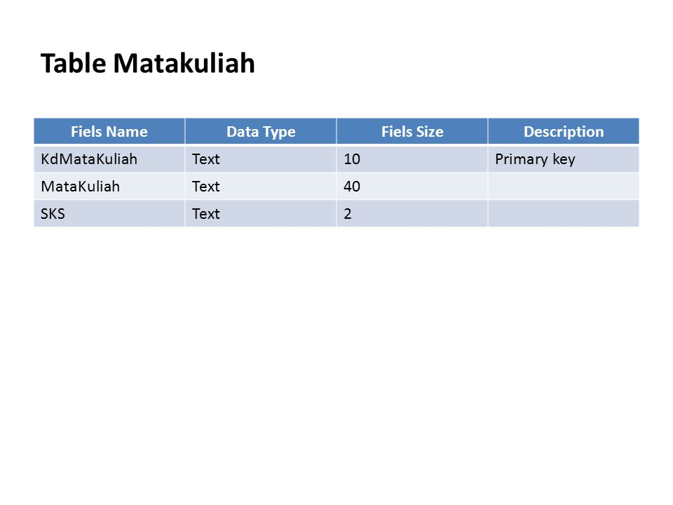 Table Matakuliah Fiels Name Data Type Fiels Size Description