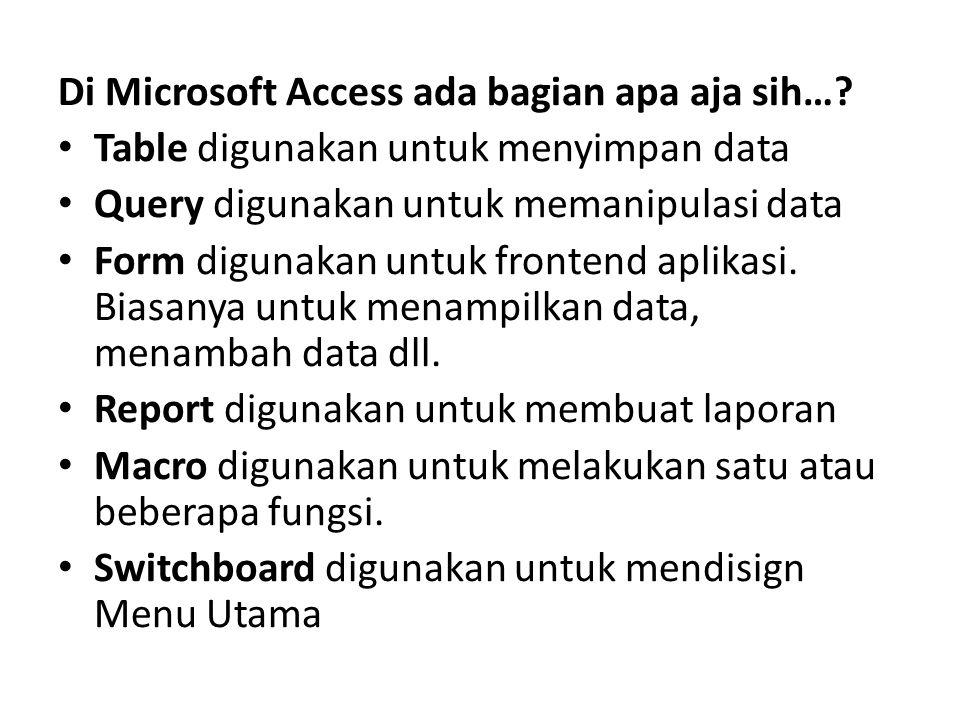 Di Microsoft Access ada bagian apa aja sih…