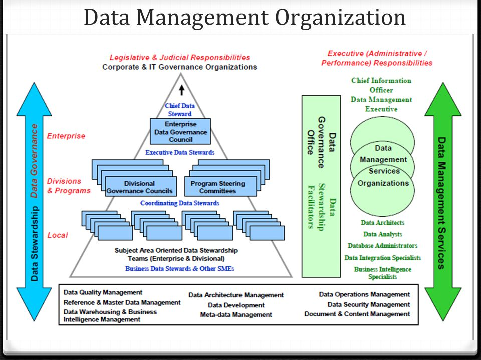 Data Management Organization