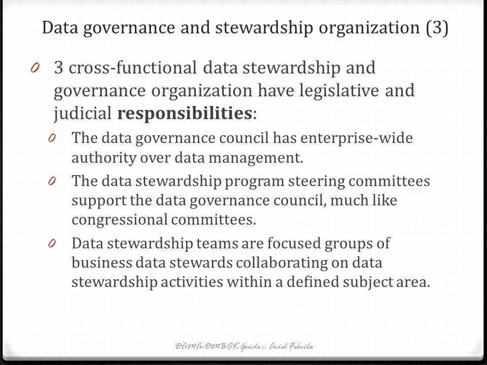 Data governance and stewardship organization (3)