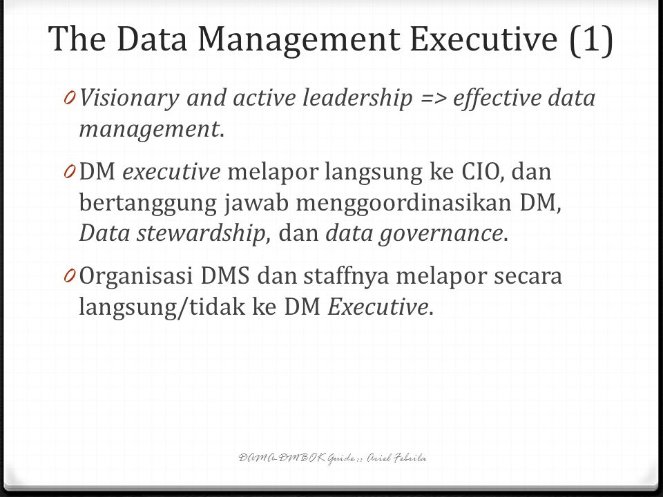 The Data Management Executive (1)