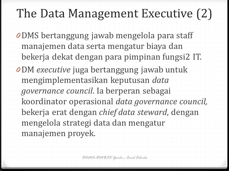 The Data Management Executive (2)