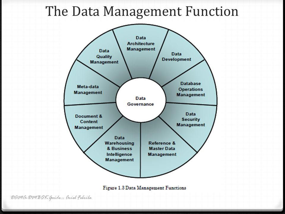 The Data Management Function