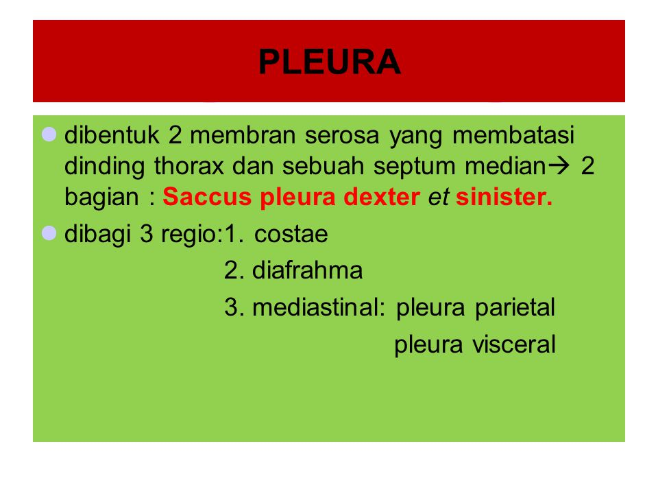PLEURA dibentuk 2 membran serosa yang membatasi dinding thorax dan sebuah septum median 2 bagian : Saccus pleura dexter et sinister.