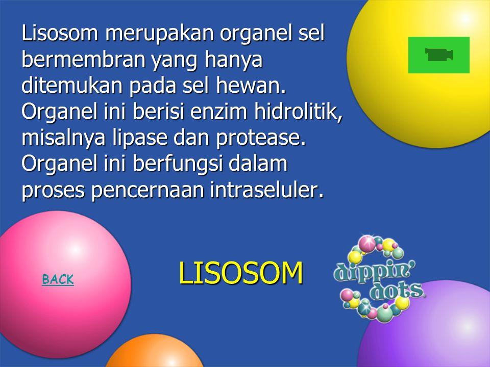 Lisosom merupakan organel sel bermembran yang hanya ditemukan pada sel hewan. Organel ini berisi enzim hidrolitik, misalnya lipase dan protease. Organel ini berfungsi dalam proses pencernaan intraseluler.