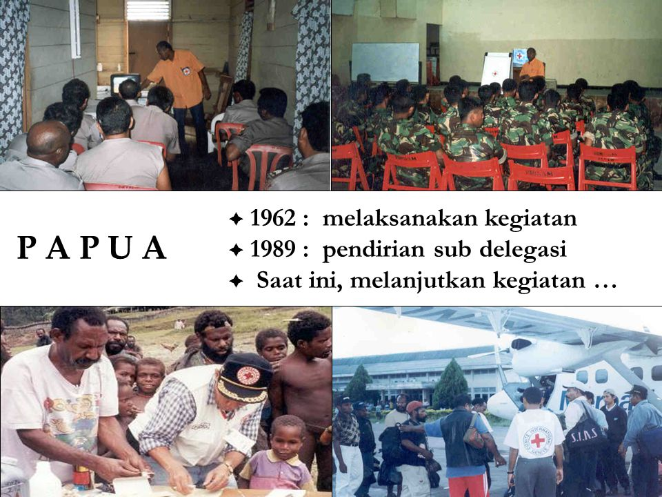 P A P U A 1962 : melaksanakan kegiatan 1989 : pendirian sub delegasi