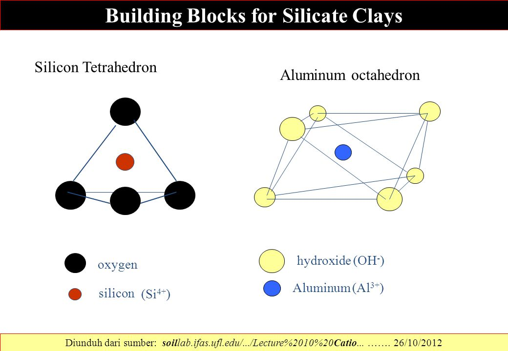 Building Blocks for Silicate Clays