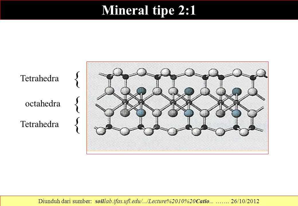 { { { Mineral tipe 2:1 Tetrahedra octahedra Tetrahedra