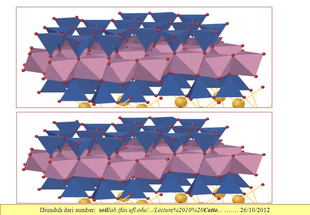 Diunduh dari sumber: soillab. ifas. ufl. edu/. /Lecture%2010%20Catio