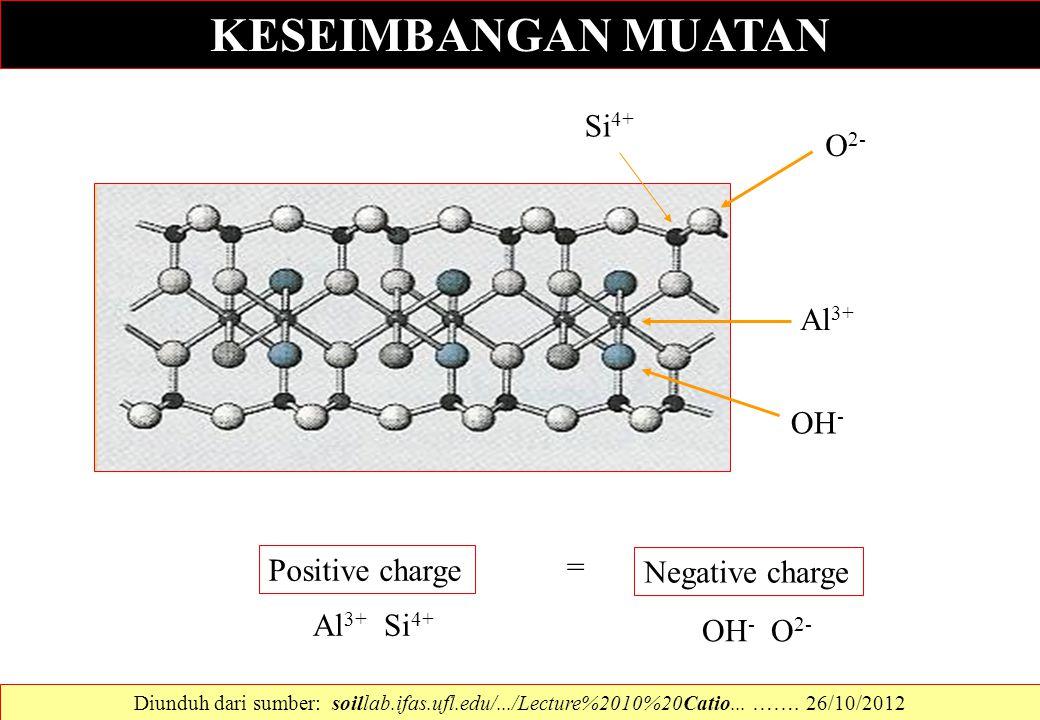 KESEIMBANGAN MUATAN Si4+ O2- Al3+ OH- = Positive charge