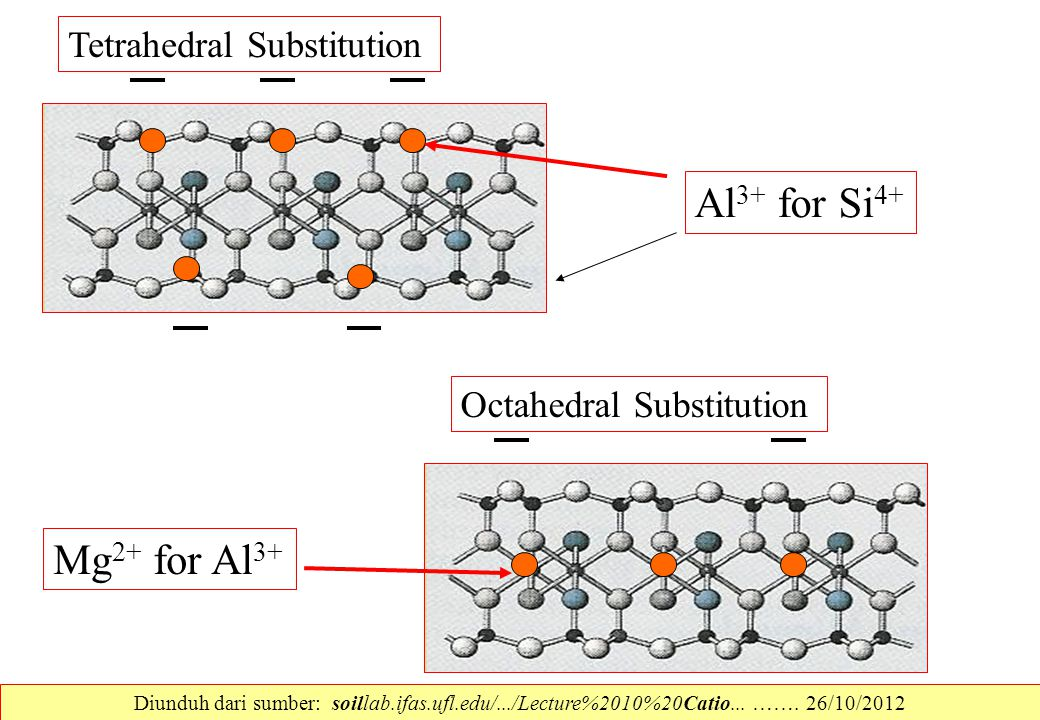 Al3+ for Si4+ Mg2+ for Al3+ Tetrahedral Substitution