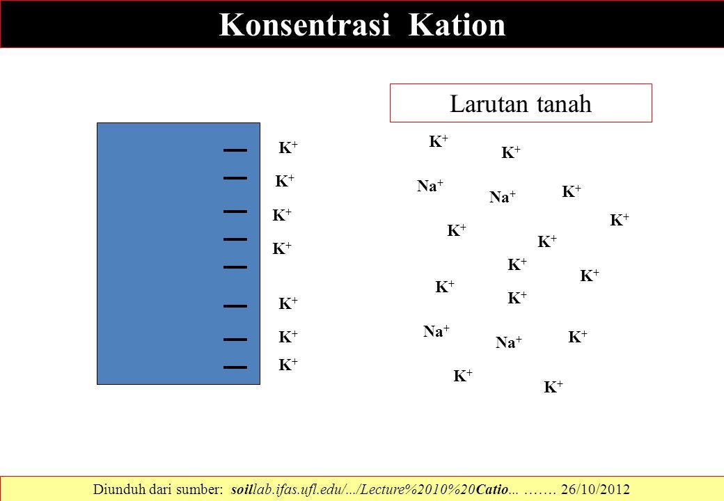 Konsentrasi Kation Larutan tanah K+ K+ K+ Na+ K+ Na+ K+ K+ K+ K+ K+ K+