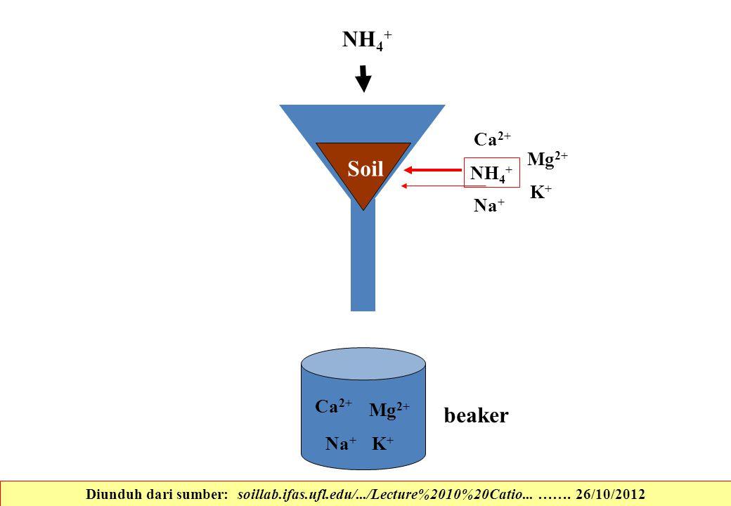 NH4+ Soil beaker K+ Ca2+ Na+ Mg2+ NH4+ K+ Ca2+ Na+ Mg2+
