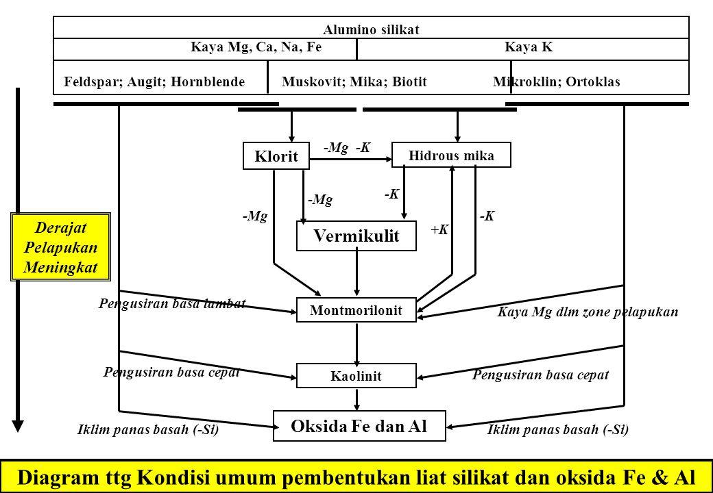 Diagram ttg Kondisi umum pembentukan liat silikat dan oksida Fe & Al