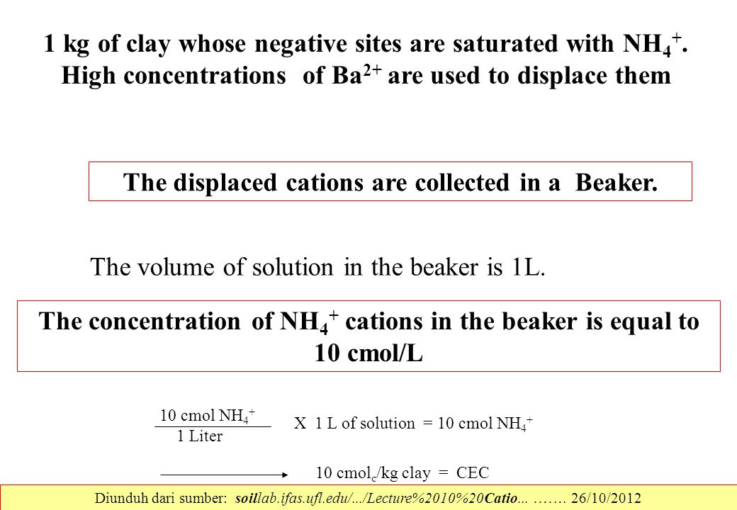 The displaced cations are collected in a Beaker.