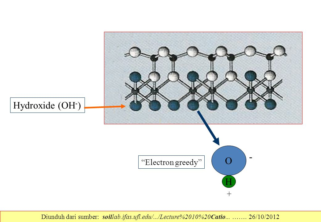 Hydroxide (OH-) O - H Electron greedy +
