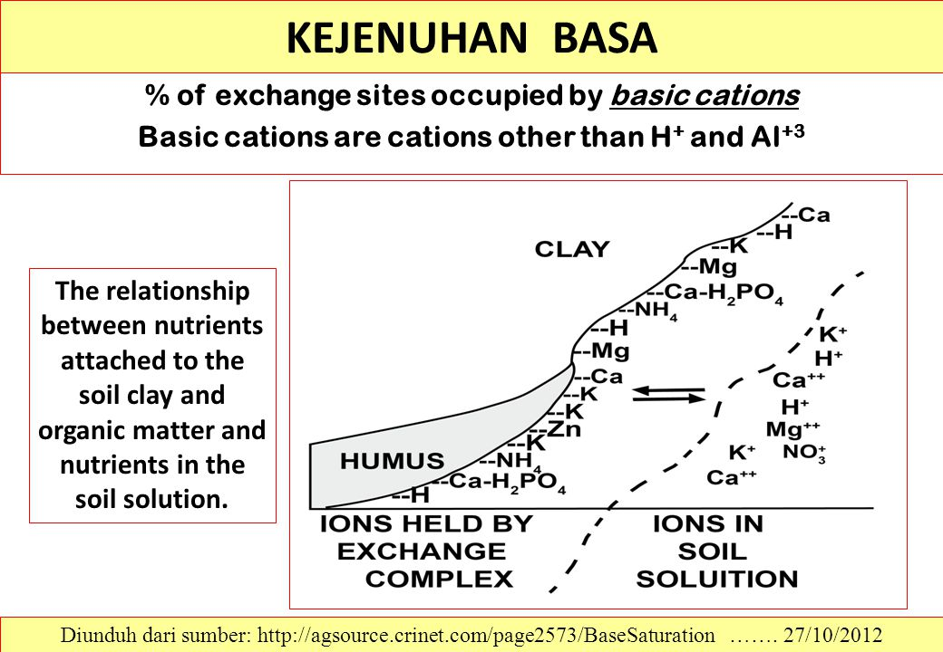 KEJENUHAN BASA % of exchange sites occupied by basic cations Basic cations are cations other than H+ and Al+3
