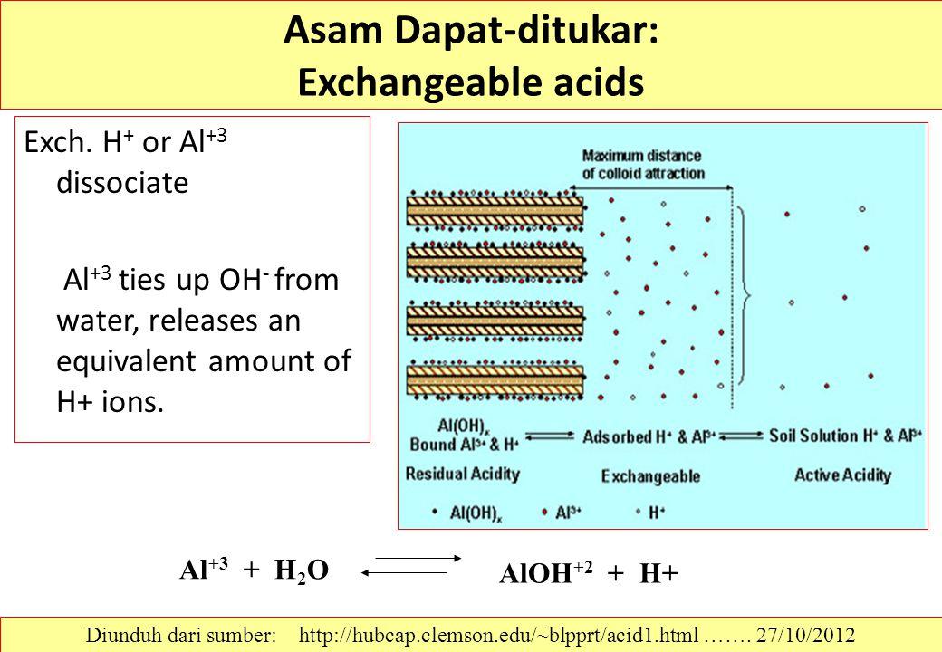 Asam Dapat-ditukar: Exchangeable acids