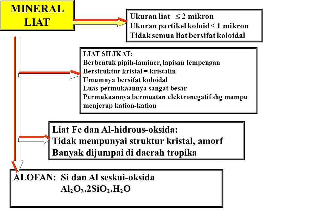 MINERAL LIAT Liat Fe dan Al-hidrous-oksida: