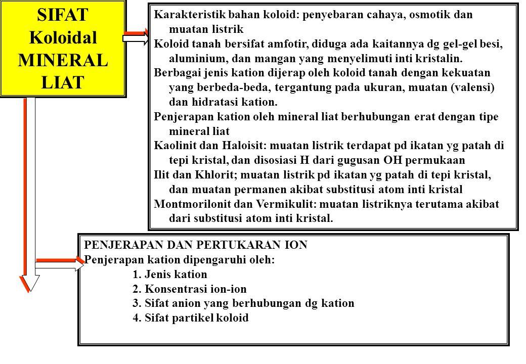 SIFAT Koloidal MINERAL LIAT