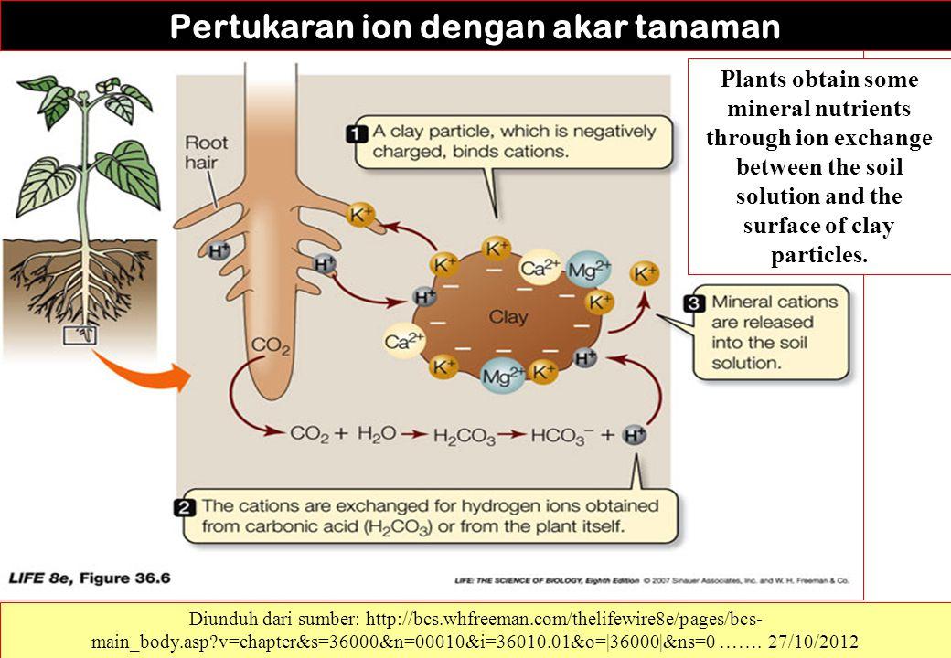 Pertukaran ion dengan akar tanaman