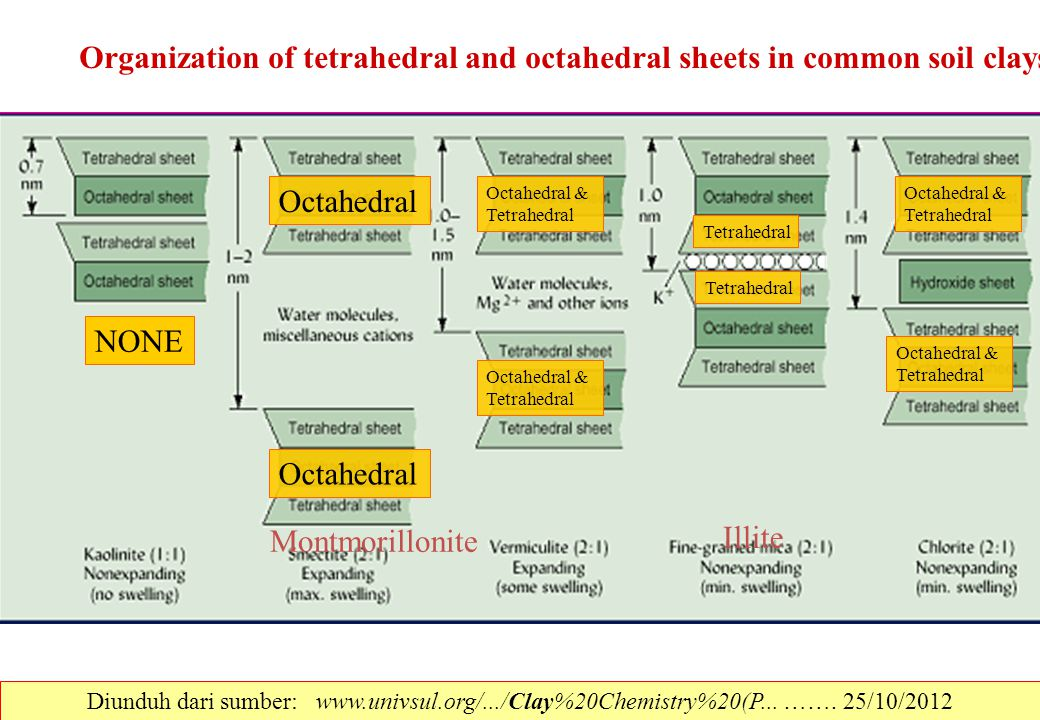 Organization of tetrahedral and octahedral sheets in common soil clays
