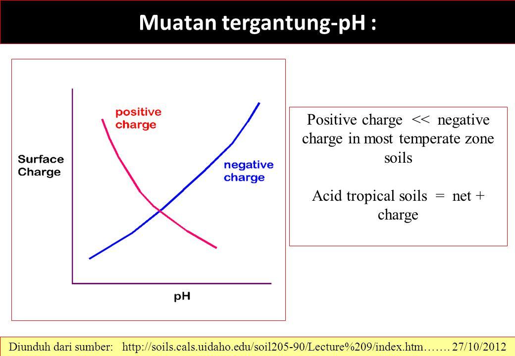 Muatan tergantung-pH :