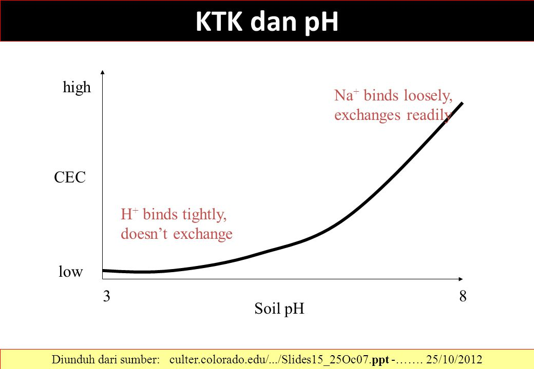 KTK dan pH high Na+ binds loosely, exchanges readily CEC