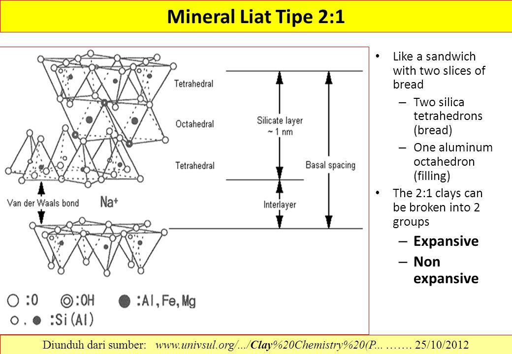 Mineral Liat Tipe 2:1 Expansive Non expansive