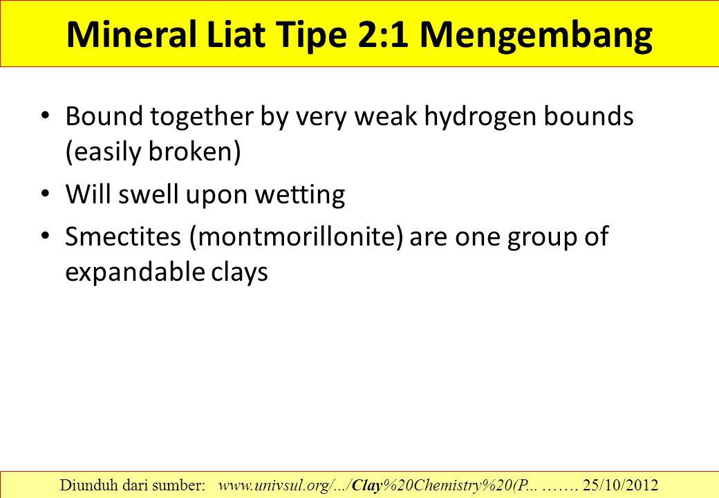Mineral Liat Tipe 2:1 Mengembang