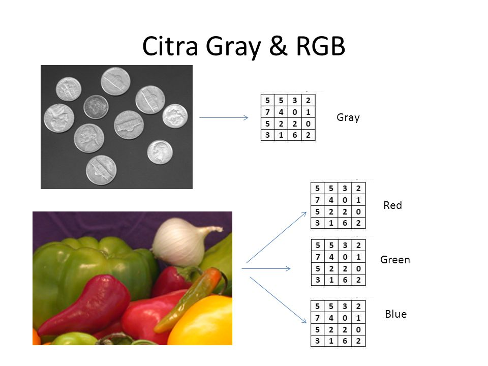 Citra Gray & RGB Gray Red Green Blue