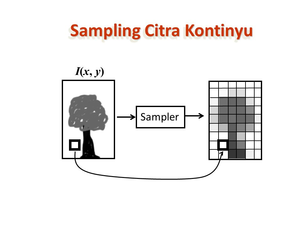 Sampling Citra Kontinyu