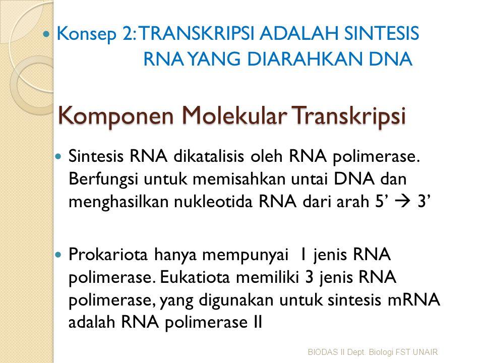 Komponen Molekular Transkripsi