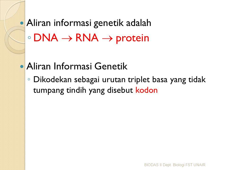 DNA RNA protein Aliran informasi genetik adalah