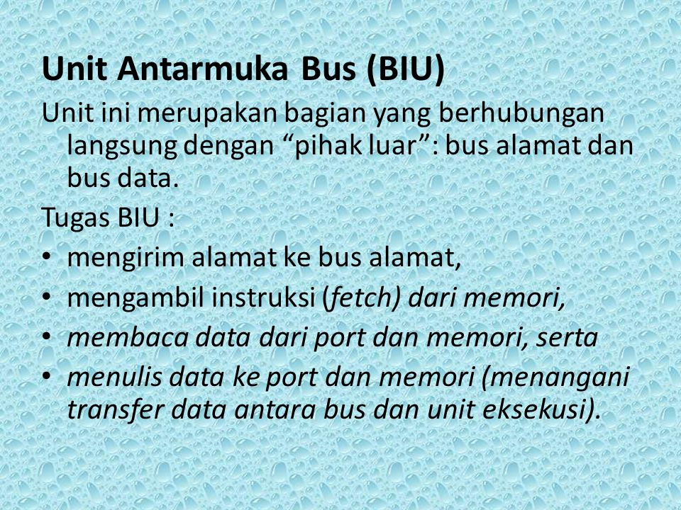 Unit Antarmuka Bus (BIU)