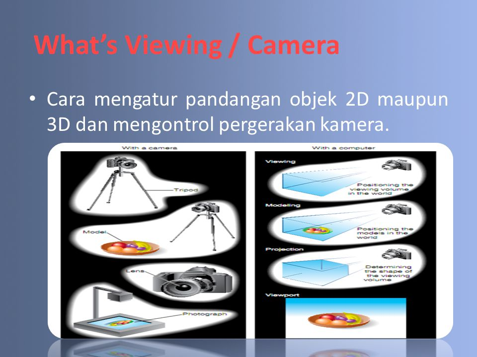 What's Viewing / Camera