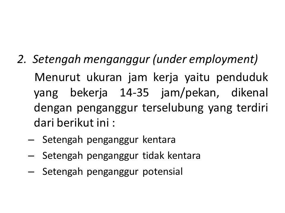 2. Setengah menganggur (under employment)