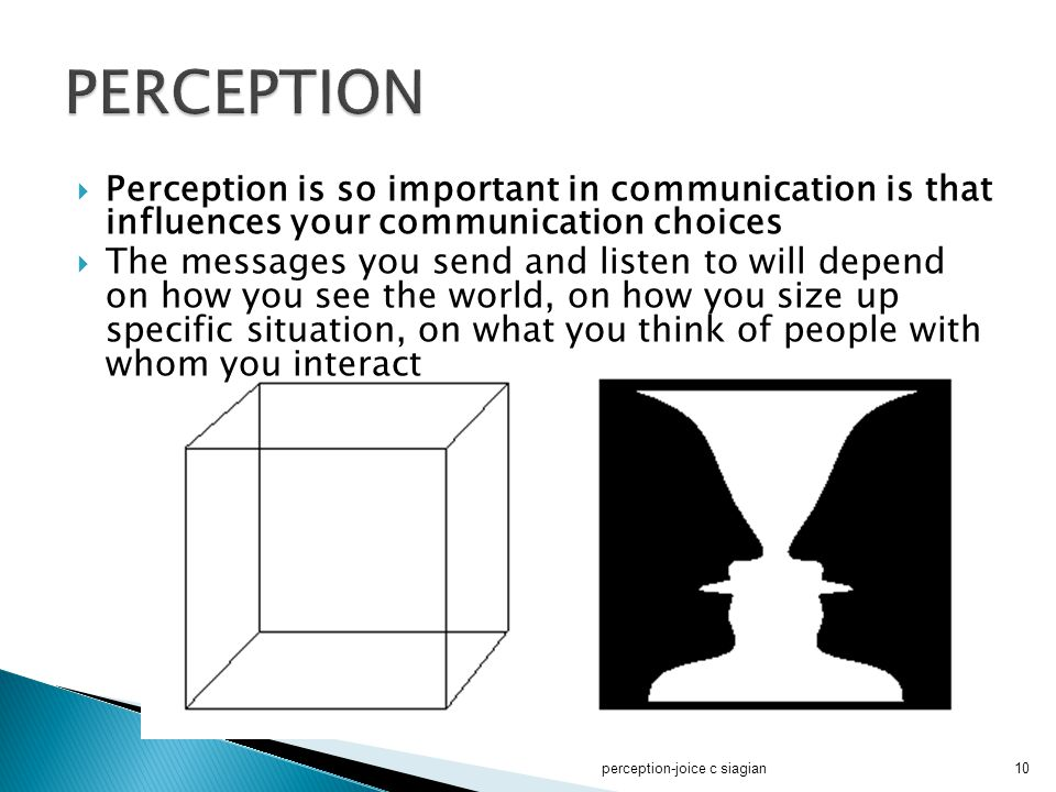 PERCEPTION Perception is so important in communication is that influences your communication choices.