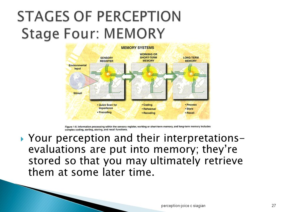 STAGES OF PERCEPTION Stage Four: MEMORY