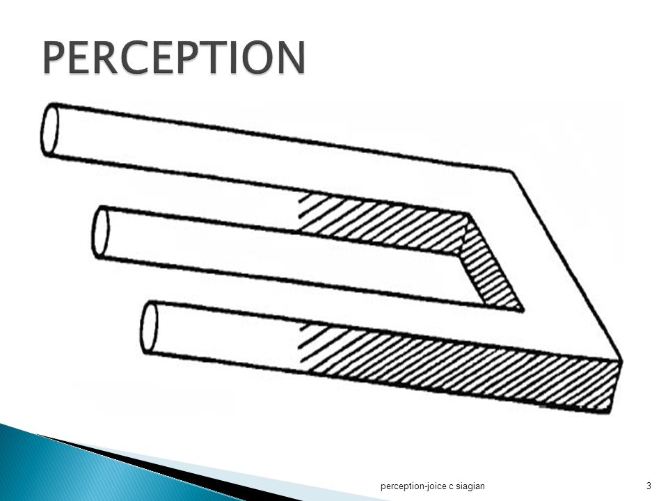 PERCEPTION perception-joice c siagian